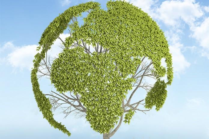 marketing sostenible de la promesa al cumplimiento