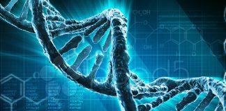 ¿Cómo desarrollar el ADN de una marca?